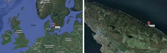 """Ladonia est située sur le bord sud de la péninsule scandinave, entre les villes suédoises de Mölle et Arild. Les coordonnées de carte de Ladonia sont 56 ° 17 '16 « N, 12 ° 32' 22″ E. Sur la carte de de Google, Ladonia est marqué simplement comme """"Nimis""""."""