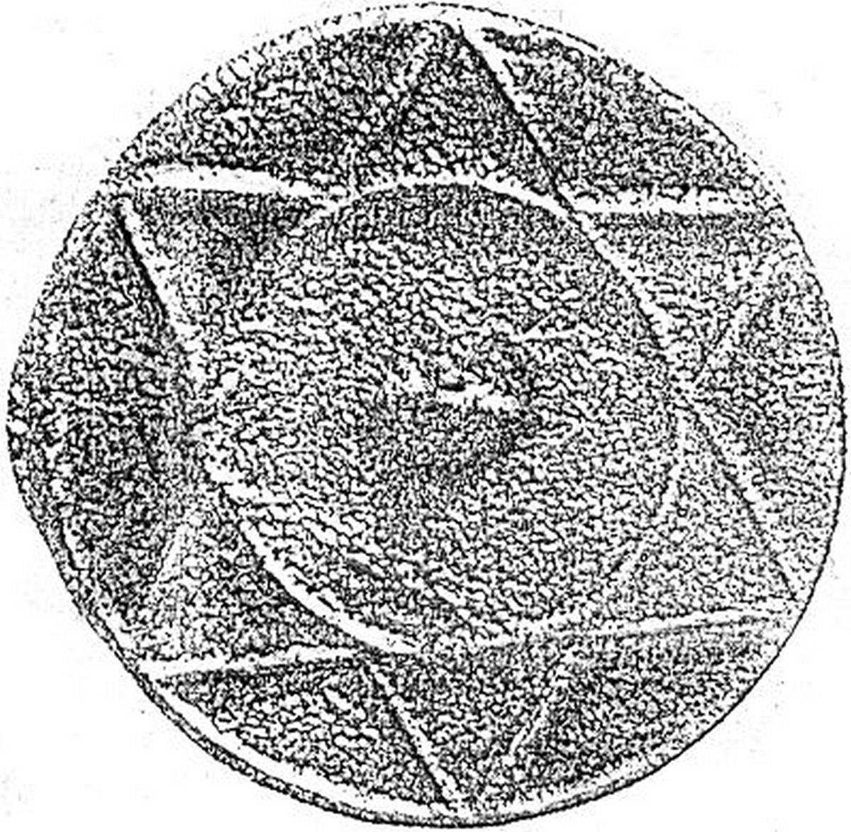 Sceau découvert lors des fouilles sur les sites khazars. Cependant, plutôt que d'avoir été fabriqués par des Juifs, ceux-ci semblent être des disques solaires chamaniques.