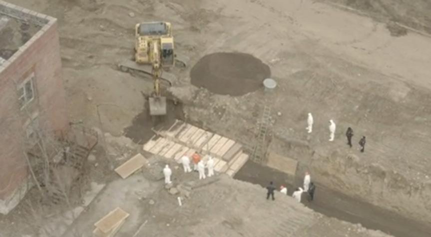 Les enterrements de masse sur l'île Hart ont quintuplé au milieu de l'épidémie deCovid-19