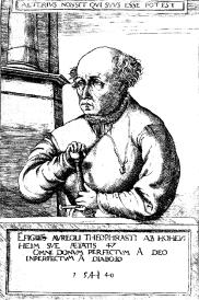 Paracelse - Le portrait de 1540 par Hirschvogel.