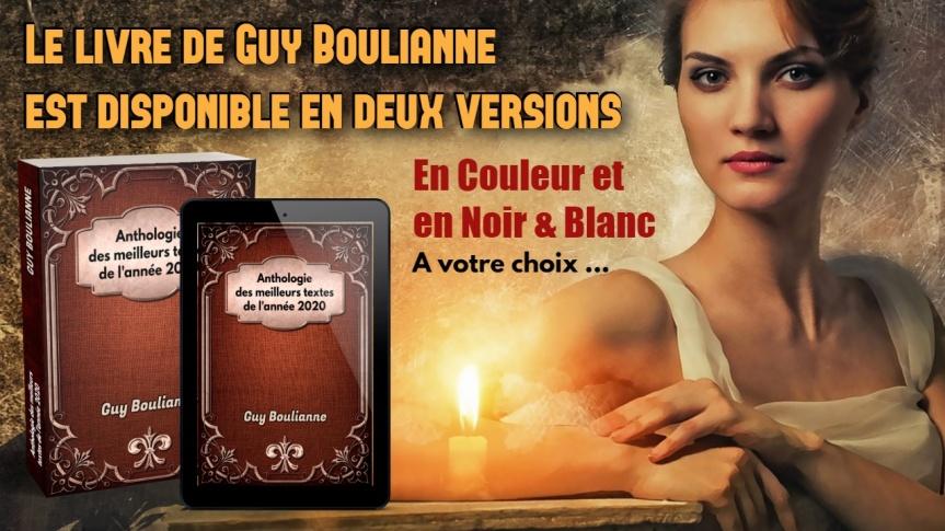 Le nouveau livre, « Anthologie des meilleurs textes de l'année 2020 » de Guy Boulianne, est maintenant disponible aux ÉditionsDédicaces