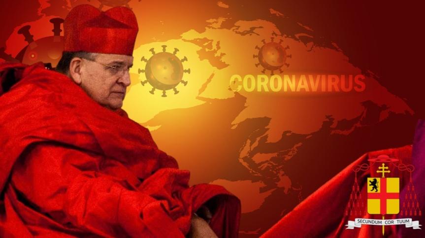 """Conférence du cardinal Raymond Leo Burke sur le thème """"Le coronavirus à la lumière de Fatima: une tragédie et une sourced'espoir"""""""