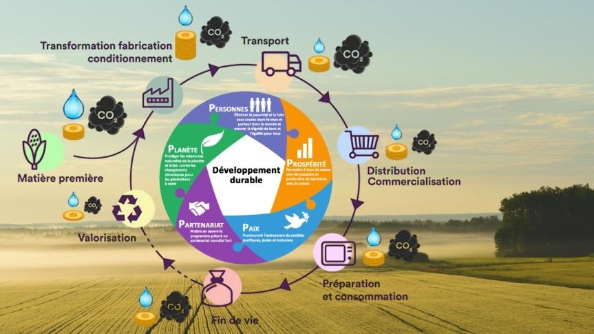 De la ferme à la fourchette : comment l'Union européenne et la Cabale de Davos prévoient de contrôler l'agriculture au sein de l'Agenda2030